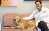 Rodney Page, dogs help people kick cancer