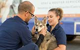 pet wellness vaccine clinic