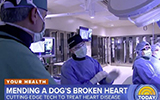 today show cardiology