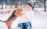 pet winter exercise