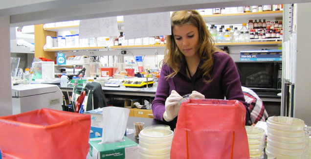 Erin Breland works in the Schweizer Laboratory