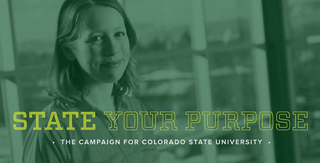 Megan Chriswell - CSU Giving Campaign
