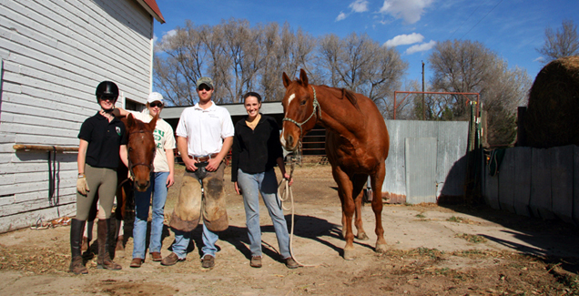 veterinary school the year class at of medicine started surgery labs this  week a wonderful part . veterinary school ...