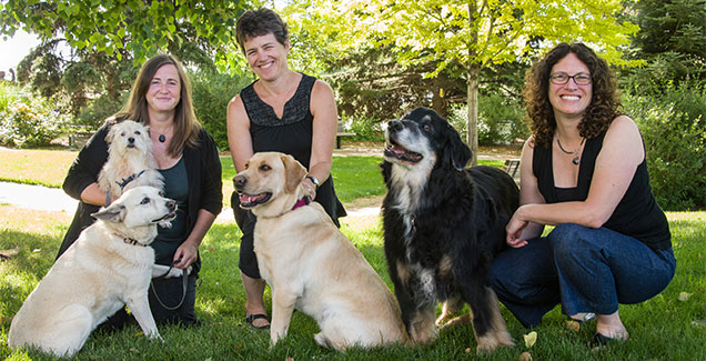 The Veterinary Communication for Professional Excellence at Colorado State University