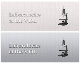 Laboratories at the VDL