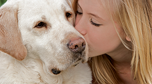 Girl kissing yellow lab
