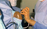 equine arthroscopy, ce, continuing education