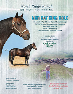 NRR Cat King Cole