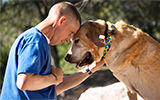 veteran, sgt. jason van loo, blu, animal cancer center