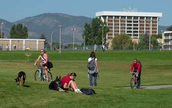 CSU Campus view of students studying outdoors