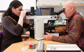 Pathologist works with Resident at double-headed microscope